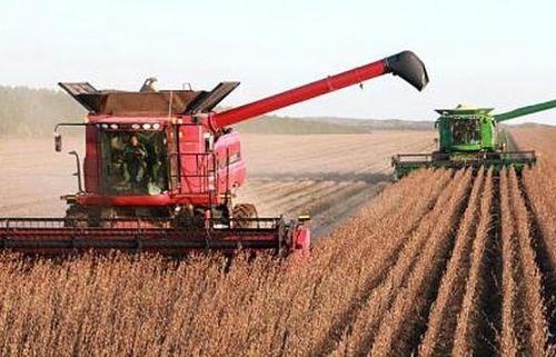 Trung Quốc: Đẩy mạnh cấp phép và thương mại hóa các giống cây trồng biến đổi gen