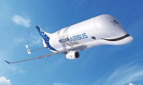 'Cá voi bay' Beluga XL của 'gã khổng lồ' Airbus chính thức được đưa vào hoạt động