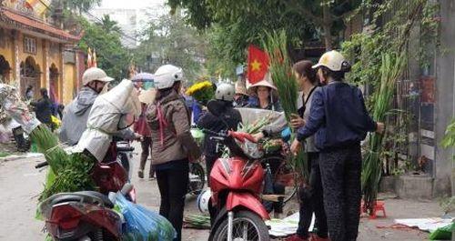 Nhộn nhịp Chợ hoa Lũng những ngày giáp Tết