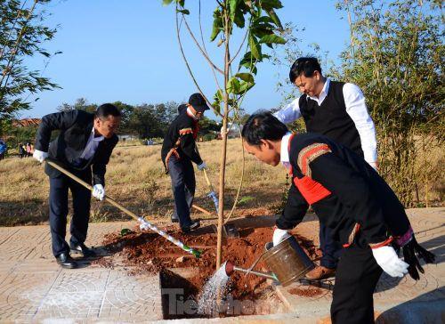 Trồng 100 cây ngọc lan và trao giải Ủ Rượu Cần tai 'Thành phố Cà phê'