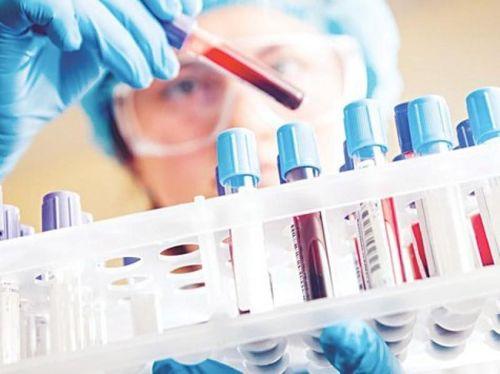 Hải Phòng: 8 người nghi nhiễm virus Corona đã được xuất viện