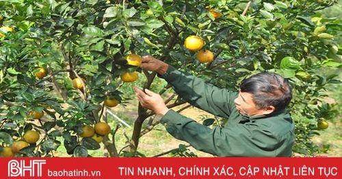 Noi gương Bác, Bí thư chi bộ Nguyễn Văn Bát làm nhiều việc ý nghĩa