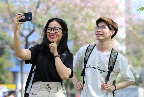 Kèn hồng nở sớm, giới trẻ đội nắng tìm chỗ check-in ở SG