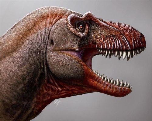 Phát hiện 'anh em' của khủng long bạo chúa T. rex