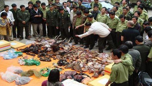 Nhiều tổ chức gửi thư ngỏ đề nghị Thủ tướng đóng cửa các chợ buôn bán động vật hoang dã