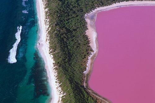 Những hồ nước màu hồng kỳ lạ ở Australia