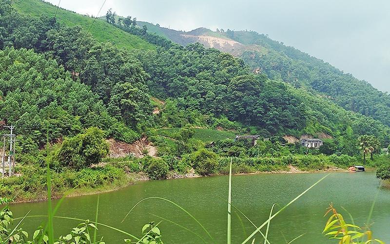 Bất cập trong thực hiện quy hoạch rừng đặc dụng hồ Núi Cốc