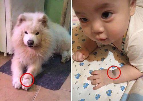 Nhìn điểm lạ trên tay con trai mới sinh, mẹ bật khóc vì sự trùng hợp khó tin