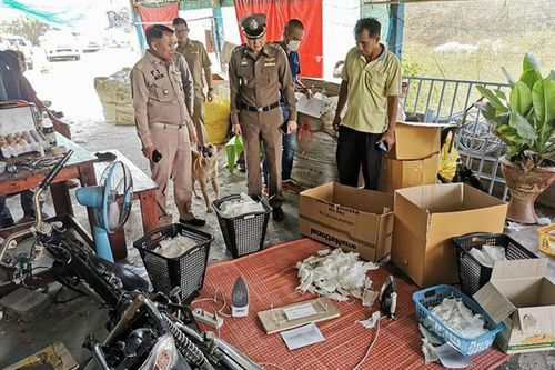 Thái Lan triệt phá cơ sở tái chế khẩu trang giữa lúc thiếu hụt