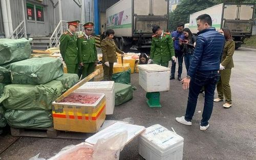 Nghệ An: Bắt xe container chở thực phẩm đông lạnh không rõ nguồn gốc