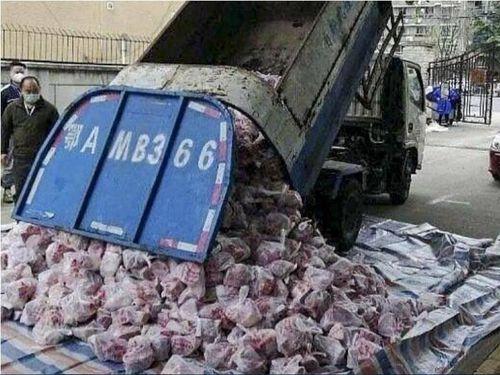 Quan chức Vũ Hán bị sa thải vì dùng xe rác chở thịt cho dân