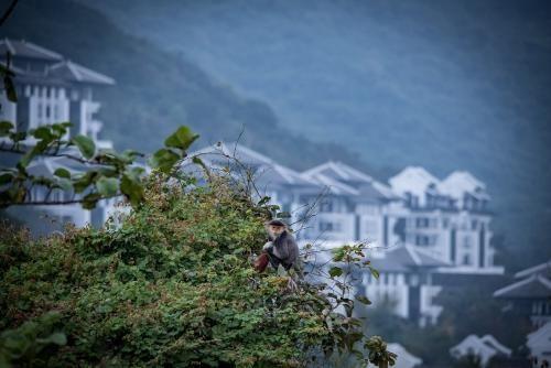 InterContinental Danang Sun Peninsula Resort ưu đãi chưa từng có cho khách du lịch nội địa