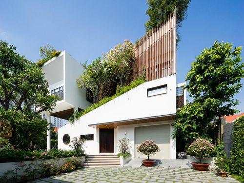 Ngôi nhà hình ruộng bậc thang phủ đầy cây xanh