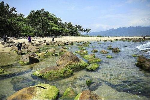 Đà Nẵng đầu tư hơn 46 tỷ phát triển du lịch cộng đồng Nam Ô