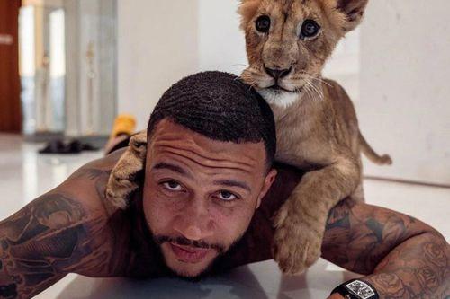 Cựu sao Man Utd chụp ảnh cùng sư tử