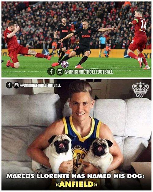 Ảnh chế: Marcos Llorente gọi cún cưng là Anfield khiến fan Liverpool nổi giận