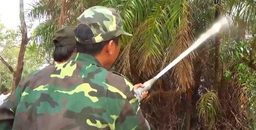 Vườn chim Bạc Liêu đang có nguy cơ cháy rừng ở cấp cực kỳ nguy hiểm