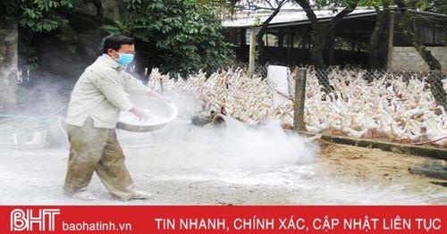 Người chăn nuôi gia cầm Hà Tĩnh duy trì sản xuất, chuyển hướng bán hàng online