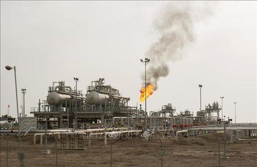 Các nền kinh tế ở vùng Vịnh 'chao đảo' vì giá dầu lao dốc