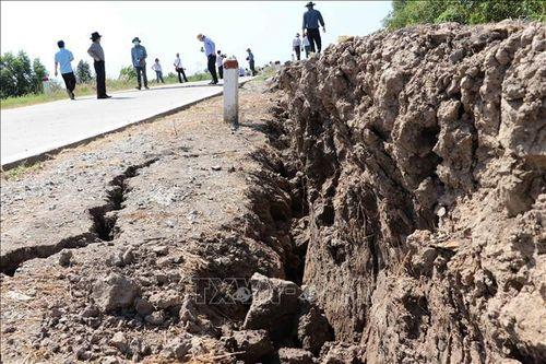 Báo động tình trạng sụt lún đê biển Tây Cà Mau