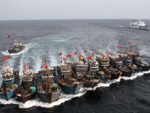 Trung Quốc lại ngang ngược cấm đánh bắt cá ở biển Đông