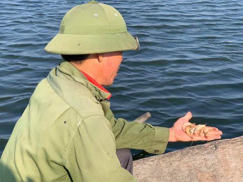 Dịch bệnh hoành hành, hàng chục ha tôm ở Nghệ An chết trắng