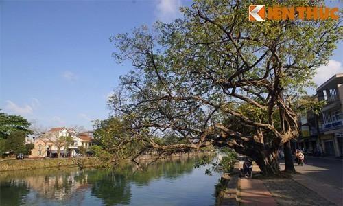 Điều tuyệt vời của 4 dòng sông nổi tiếng xứ Huế