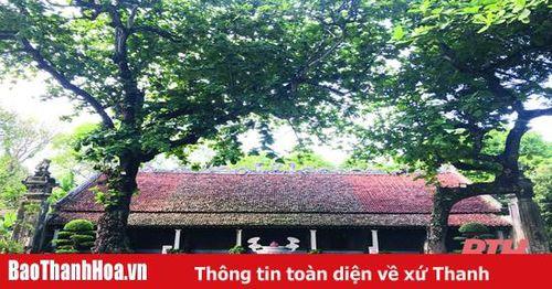 Sớm bảo tồn, tôn tạo Khu Di tích lịch sử Thái miếu nhà Hậu Lê