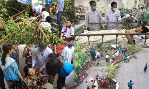 Toàn cảnh vụ cây phượng bật gốc đè vào người học sinh gây thương vong tại trường Bạch Đằng