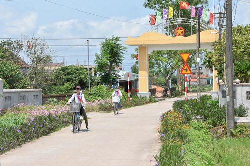 Nối dài những tuyến đường hoa nông thôn mới