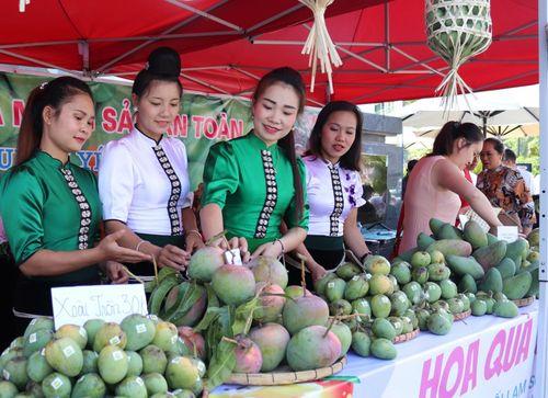 Nông sản Sơn La: Đồng bộ sản xuất theo tiêu chuẩn VietGap