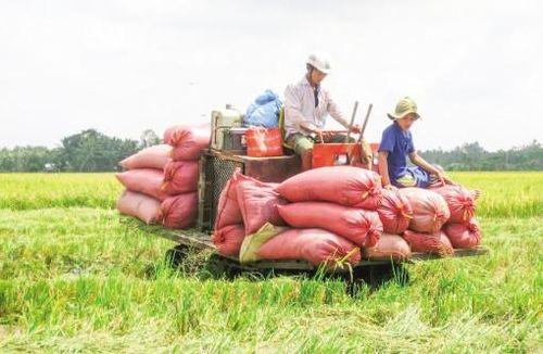 Cần đầu tư tương xứng cho nông nghiệp