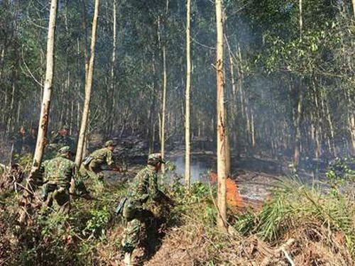 Kịp thời khống chế vụ cháy rừng