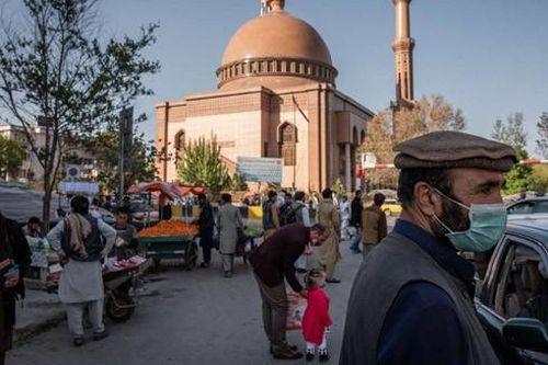Tuyệt vọng vì đại dịch, người Afghanistan tìm đến 'vaccine' thảo dược