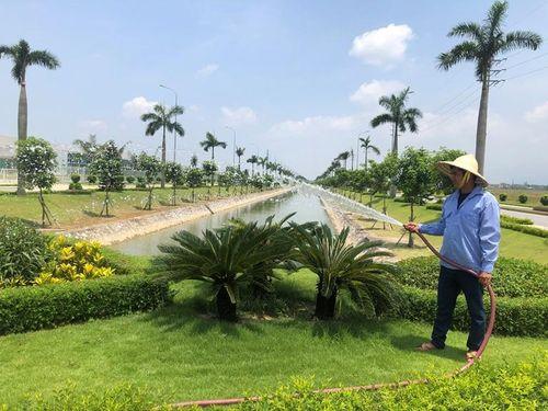 Xây dựng môi trường xanh trong các khu công nghiệp tỉnh Vĩnh Phúc