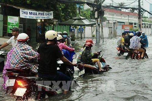 Nan giải chống ngập tại Tp. Hồ Chí Minh – Bài 4: 'Khắc khoải' những kênh thoát nước