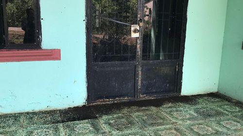 Gia Lai: Dân khổ vì bọ đậu đen