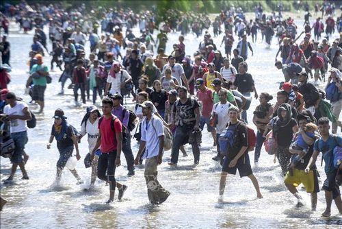 Hy vọng cho người tị nạn