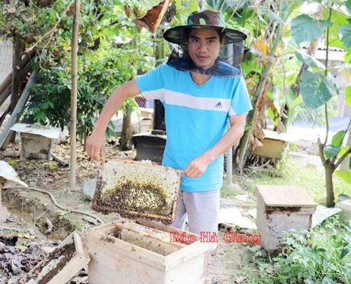 Hà Giang: Vươn lên làm giàu từ nuôi ong lấy mật