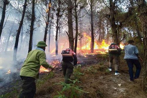 Hà Tĩnh: Cháy rừng bùng phát trở lại, các lực lượng tiếp tục 'trực chiến'