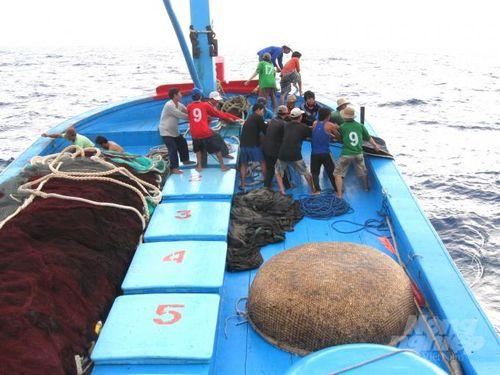 Nỗi khổ lao động nghề cá không chuyên