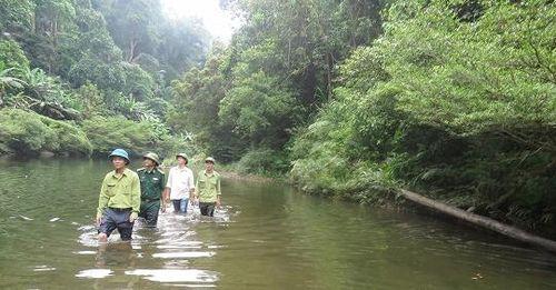 Thành lập Khu dự trữ thiên nhiên Động Châu - Khe Nước Trong