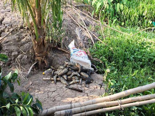 Vẫn chưa bồi thường thiệt hại cho dân bị ảnh hưởng ô nhiễm