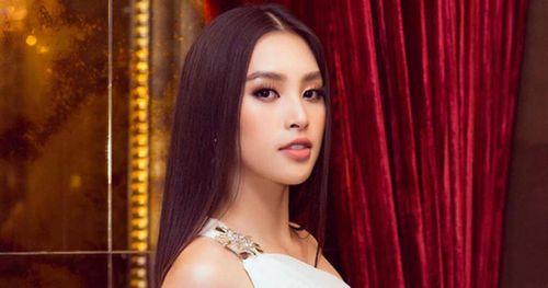 Hoa hậu Trần Tiểu Vy: Muốn khẳng định mình là đóa hoa có sắc lẫn hương