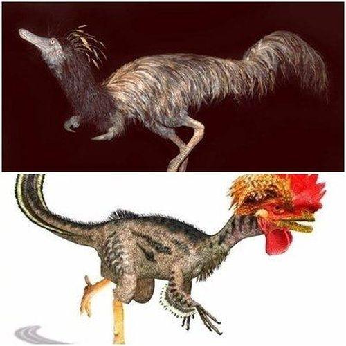 Quái vật lạ đầu khủng long, mình đà điểu 'hồi sinh' từ suối Địa ngục