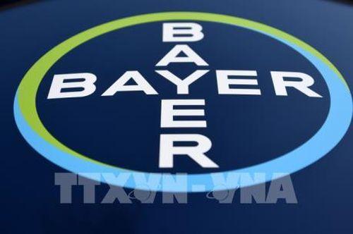 Bayer được giảm tới 74% tiền bồi thường vụ kiện thuốc diệt cỏ chứa chất gây ung thư