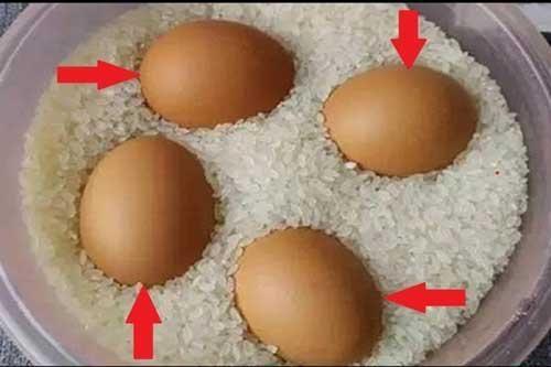 Bỏ một quả trứng vào trong hũ gạo, kết quả sẽ khiến bạn ngỡ ngàng đến khó tin