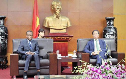 Phát triển mô hình hợp tác Nam - Nam giữa các nước châu Phi với Việt Nam