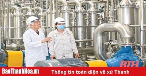 'Đánh thức' vùng đồi Lam Sơn