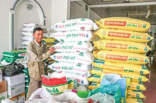 Giá phân bón bình ổn, thuận lợi cho nông dân sản xuất lúa thu đông